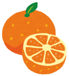 fruit_orange2